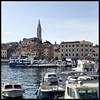 Marina (a.iva) Tags: croatia istria rovinj marina boats hrvatska