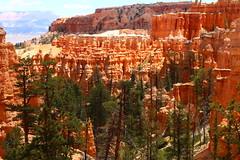 IMG_2026 (Ichiban7too) Tags: bryce national park canyon utah nature hoodoo red sandstone