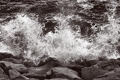 Waves Crashing 1 (pni) Tags: monochrome sea ocean foam froth water splash wave seaweed shore stone northatlanticocean reykjavik is18 iceland ísland pekkanikrus skrubu pni