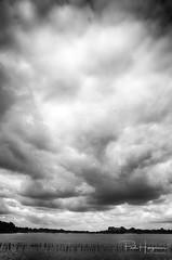 Cloudy sky over Botshol (PaulHoo) Tags: nikon d750 hdr cloud sky cloudporn botshol landscape nature blackandwhite dramatic water 2018