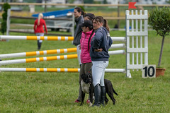 A9907243_s (AndiP66) Tags: springen pfingstspringen pfingsten pfingstmontag ettiswil 2018 21mai2018 mai pferd horse schweiz switzerland kantonluzern cantonlucerne concours wettbewerb horsejumping equestrian sports springreiten pferdespringen pferdesport sport sony alpha sonyalpha 99markii 99ii 99m2 a99ii ilca99m2 slta99ii sony70400mm f456 sony70400mmf456gssmii sal70400g2 amount andreaspeters