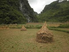 Guizhou China 2017  平塘 4 (黔中秘境) Tags: china guizhou asia mountains 中国 贵州 亚洲 山 大自然