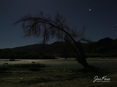 Moon River (jan-krux photography - thx for 3 Mio+ views) Tags: dehoop orangeriver orange fluss africa south namibia border grenze nacht night water wasser flowing fliessen adventure abenteuer reisen travel olympus omd em1mkii landscape landschafr stars sterne mond moon moonlid mondschein reflexion licht tree baum schatten shadow aiaisrichtersveldtransfrontierpark richtersveld 4x4 offroad berge mountains sky himmel