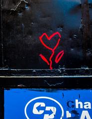 Flower in the Desert--NYC, 5/18 (Ed Newman) Tags: flower graffiti color manhattan nyc newyork upperwestside
