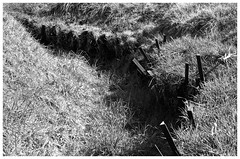 Remains, German Trenches, Beaumont-Hamel (Ciaranchef's photography.) Tags: somme ww1 war worldwar1 thegreatwar greatwar