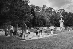 R1-053-25 (David Swift Photography) Tags: davidswiftphotography newjersey scullvillenj atlanticcountynj eggharbortownshipnj cemeteries graveyards graves tombs tombstone familyplots ruralgraveyards 35mm film ilfordxp2 nikonfm2