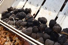 Black Truffles (Bri_J) Tags: sheffieldfoodfestival2018 sheffield southyorkshire uk foodfestival yorkshire nikon d7200 blacktruffles tubermelanosporum mushroom funghi stall