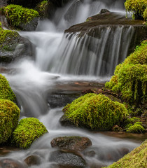 Sol Duc Falls (jeff's pixels) Tags: solduc waterfall water woods forest pnw washington pacificnorthwest longexposure moss hiking nikon d850