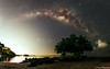 Lonely Tree no more lonely (Marcus Lim @ WK) Tags: tree milkyway milky star starry night landscape panorama seaside water cloud cloudy sky