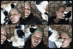We tried to take floor selfies (Melissa Maples) Tags: brussel bruxelles brussels belgique belgië belgium europe apple iphone iphone6 cameraphone winter roundedcorners multipanel hexaptych me melissa maples selfportrait woman shorthair bluehair greenhair cherry animal kitty cat tiles floor