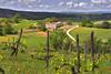 DSC_7447 (littleirons) Tags: toscana viti chianti landscape panorama pienza val dorcia