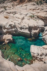 Emerald Pool (dogslobber) Tags: yellow oman omani middle east eastern arab arabian peninsula travel adventure explore wanderlust oasis wadi bani khalid