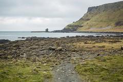 18MAR15 SLYNNLEE-7565 (Suni Lynn Lee) Tags: giantscauseway giants causeway northern ireland ni landscape scenic rocky beach volcanic