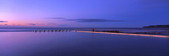 Dawn at Merewether (Martin Canning) Tags: 617 australia fuji fujig617 fujifilm g617 martincanning martincanningcom merewether nsw newcastle oceanbaths velvia50 analog dawn film light newsouthwales oceanpool panorama panoramic purple sunrise velvia