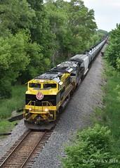 Virginian Rte. 20 (R.G. Five) Tags: ns heritage virginian 1069 freeport cn sub ethanol train railroad