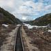 White Pass & Yukon Railroad - Skagway - Alaska (7 of 19)