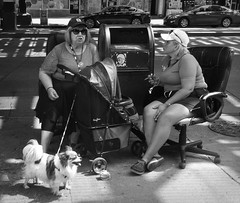 Street Sit Down (Robert S. Photography) Tags: street chairs leather office sidewalk people puppy sitting conversation mailbox bw monochrome brooklyn brightonbeach nyc sony dscwx150 iso160 june 2018