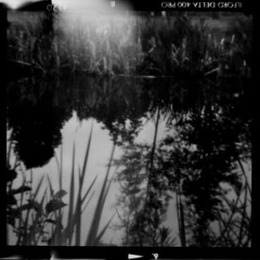 Roll01_-4_Pos_Small (tobyv_photo) Tags: agiflex agifold agipinfold pinhole pinholelens lensless camera conversion photography medium format bellows classic mono ilfordfilm ilford delta 400 home development 120 6x6 square river water reeds reflections