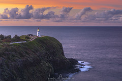 kilauea lighthouse (Lace Photos www.lacephotos.com) Tags: lighthouse kauai hawaii sunset