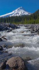 Hood_6 (Mike_100) Tags: mountain mthood mounthood river whiteriver forest oregon cascades hood nature
