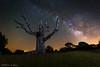 Alien. (Roberto_48) Tags: ngc nocturna larga exposicion hornuez enebral segovia estrellas via lactea centro nucleo
