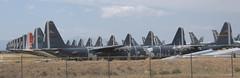 Lockheed C-130's Hercules at AMARC (707-348C) Tags: davismonthan az arizona usa 2018 usaf usn coastguard c130 hercules tucson turboprop propliner prop amarc