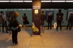 Feeling Curious? (cookedphotos) Tags: 2018inpictures toronto ontario canada ca canon 5dmarkiv streetphotography ttc subway stgeorge station feelingcurious advertisement typography woman cellphone 365project p3652018