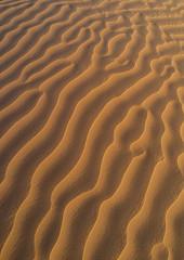Sand dune sin rub al khali desert, Dhofar Governorate, Rub al Khali, Oman (Eric Lafforgue) Tags: adventure arabia arabianpeninsula colorimage desert dhofar dry dunes emptyquarter environment erg gulfcountries idyllic majestic nature nopeople oman oman18435 outdoors rubalkhali sand sanddesert sanddune scenics sun temperature tourism tranquilscene tranquility travel traveldestinations vertical wilderness dhofargovernorate