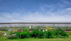 untitled . (helmet13) Tags: leicaxvario colors flower fence sky clouds springtime simplicity flowerbed silence outdoor garden sunshine mountains aoi peaceawards villarot world100f