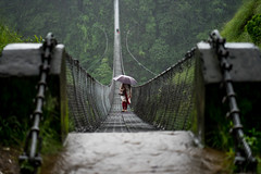 Stuck (sogni_di_margherita) Tags: nepal np pokhara sony a7 ilce7 emount nex alpha zeiss batis 85mm bridge stuck