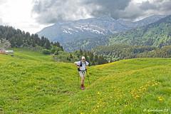 IMG_2246_DxO.jpg (Goodson73) Tags: didier bonfils goodson73 dgoodson bauges pointe de chaurionde 2157m parc du mouton rando montagne