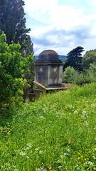 294 - Cap Corse, Rogliano, le cimetière en contrebas de l'église San Martinu (paspog) Tags: corse capcorse france rogliano mai may 2018
