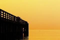 Fishing at the dock (tarikabdelmonem) Tags: fishing dock dusk sunset puget fidalgo washington washingtonstate sea