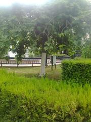 Fotografie70301 (chicore2011) Tags: littlepark fountain