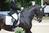 _MG_8045 (dreiwn) Tags: dressage dressur dressuur pferd reitturnier turnierreiten pferdesport horse horseback horseriding equestrian reitverein dressurprüfung kandare doublebridle reiten pferde reitplatz ridingarena
