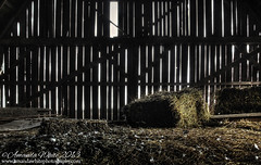 The Forgotten Hay Loft (sminky_pinky100 (In and Out)) Tags: ban abandoned hay straw hayloft wooden decaying decay ruraldecay interior inside novascotia truro agricultural farm farming canada onot cans2s