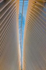 20180511-DSCF3604-World_Trade_Center (Milkseb) Tags: newyork oculus