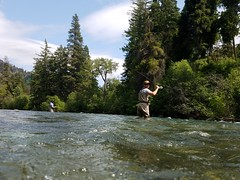 20180605_144701 (Red's Fly Shop) Tags: naches river wading wadefishing