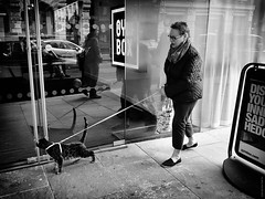 Catwalk (Ian Smith (Studio72)) Tags: rx100 sonyrx100 sony uk england british london weird crazy odd woman cat catwalk walking pet bw bnw nb mono street urban animal curious funny lol reflection studio72