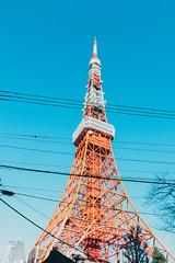 _MG_6671 (waychen_c) Tags: japan tokyo minatoku tokyotower tower architecture building cityscape sky blue red 日本 東京 港区 芝公園 東京タワー 東京鐵塔 2017東京旅行