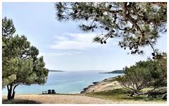 (ialeksova) Tags: croatia istria premantura adriatic nationalpark hrvatska