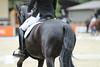 _MG_7891 (dreiwn) Tags: dressage dressur dressuur pferd reitturnier turnierreiten pferdesport horse horseback horseriding equestrian reitverein dressurprüfung kandare doublebridle reiten pferde reitplatz ridingarena