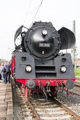 01 519 (12) (Disktoaster) Tags: eisenbahn zug railway train db deutschebahn locomotive güterzug bahn pentaxk1 westfalendampf 01519 dampflok steamer steamlocomotive
