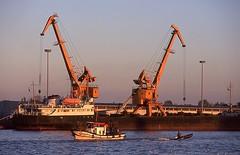 Bandar-e Anzali (Daniel Biays) Tags: bandareanzali portmaritime bateaux boats grues cranes sunset coucherdusoleil iran