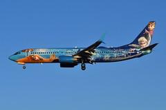 C-GWSV Boeing 737-8CT at CYYZ (yyzgvi) Tags: cgwsv boeing 7378ct westjet airlines cyyz yyz toronto pearson disney frozen livery