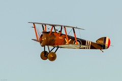 Sopwith Camel (Sébastien Locatelli) Tags: sébastienlocatelli 2018 aviation airshow avion aircraft shuttleworth evening meeting aérien canon eos 80d ef 300mm f4 l is usm early british old warden first world war sopwith camel