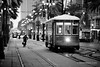 NEW ORLEANS STREET CAR CANAL STREET NEW ORLEANS BLACK AND WHITE (wajadoon) Tags: neworleans louisianaunitedstates america usa us south southern louisiana la city cities cityscape urban americancitiesphotography neworleansphotos neworleansframedphotos neworleansprints neworleanscanvasprints neworleansframedfineartphotographyprints neworleansstockphotos artisticneworleansphotography neworleansphotographs neworleansaluminummetalprints neworleanspictures neworleansimages neworleanslargewallart neworleansfineartphotographer neworleansphotography neworleansartgallery buyneworleansphotographicprintsfineartforsale neworleansfineartacrylicprints neworleanshomeofficeinteriordesigndecorwallartbuy southerncities nola bigeasy gulf gulfcities southernamericancities americansouth urbanphotography blackandwhite neworleansstreetcar streetcar street tram tracks morning biker canalstreet neworleansdowntown streetphotography