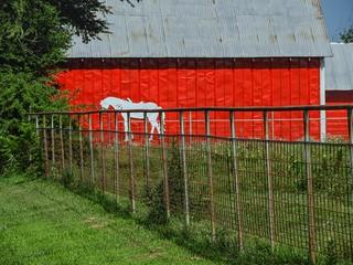 Pony Fence