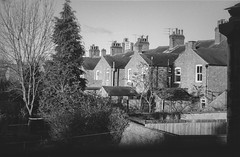 CP View FP4 29 (Iain Jaques) Tags: leicester clarendonpark terraces winter january2018 ilford ilfordfp4 fp4 fp4party 35mm filmphotography film analoguephotography eos3 canoneos3 iso125 nikoncoolscan bw mono