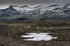 Islande, Jökulsárlón,8 (Patrick.Raymond (5M views)) Tags: nikond700 nikon2485mm nikon d700 jökulsárlón glacier glace froid gel hiver hdr